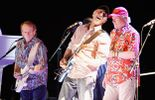 The Beach Boys - The 50th Anniversary Tour