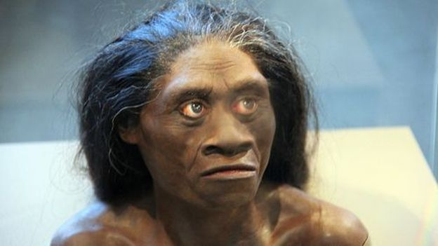 "Une femme ""homo floresiensis"", reproduction exposée au Smithsonian Museum of Natural History"